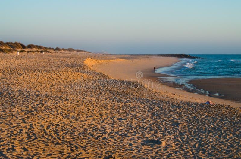 Sunset in the beach stock photos