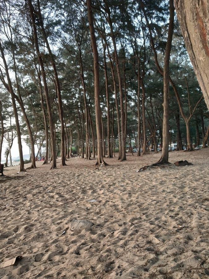 Sunset Beach at Shiroda stock photography