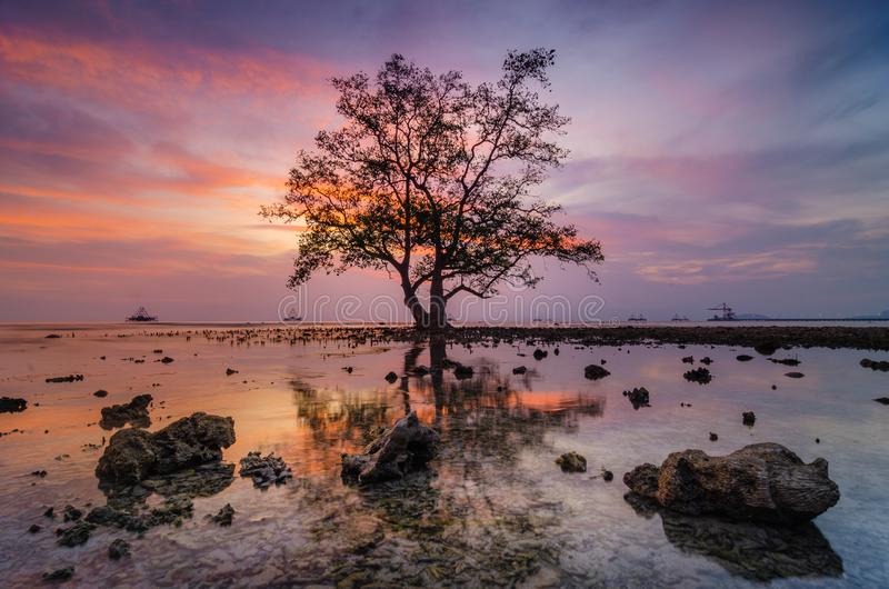 BEFORE THE SUNSET IS BEAUTIFUL royalty free stock photography