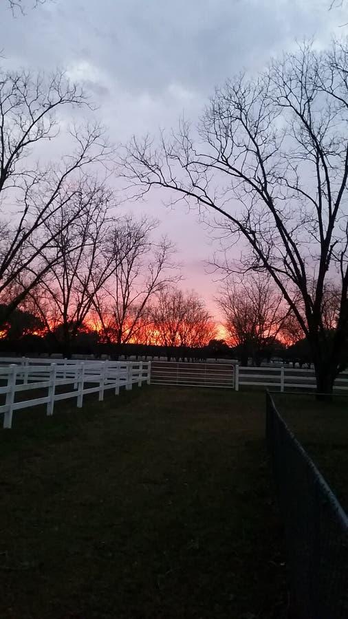 Sunset beauty stock photo