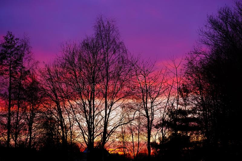 Sunset behind trees with beautifull colors. Above rooftops stock photos