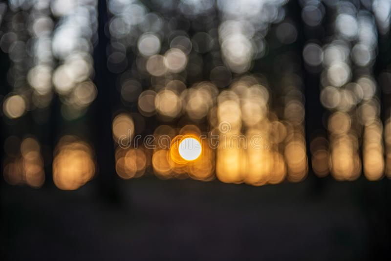 Sunset behind trees with lens blur effect. Dark tones background royalty free stock image