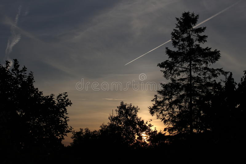 Sunset behind trees royalty free stock photo