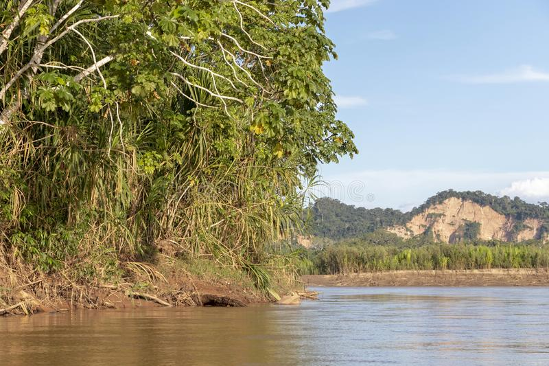 Sunset at Beni river cliffs, adventure in jungles of Madidi national park, Amazon river basin in Bolivia, South America. Sunset at Beni river cliffs during royalty free stock photography