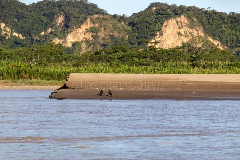 Sunset at Beni river cliffs, adventure in jungles of Madidi national park, Amazon river basin in Bolivia, South America. Sunset at Beni river cliffs during royalty free stock images