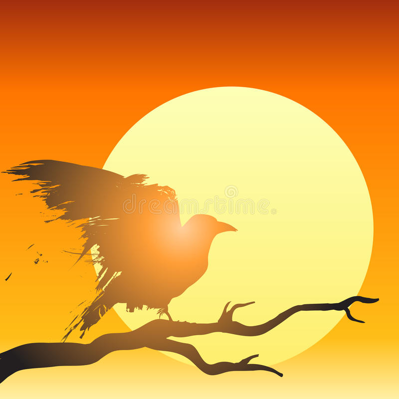 Download Sunset bird vector stock vector. Illustration of fear - 24689898
