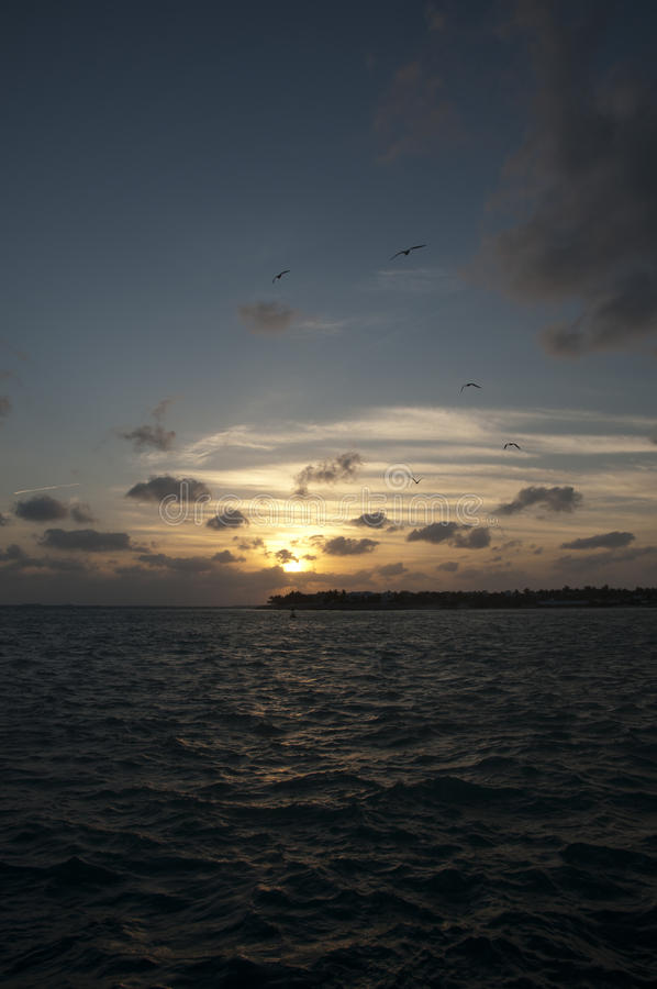 Download Sunset With Birds And Cloudy Sky Stock Image - Image: 16225267