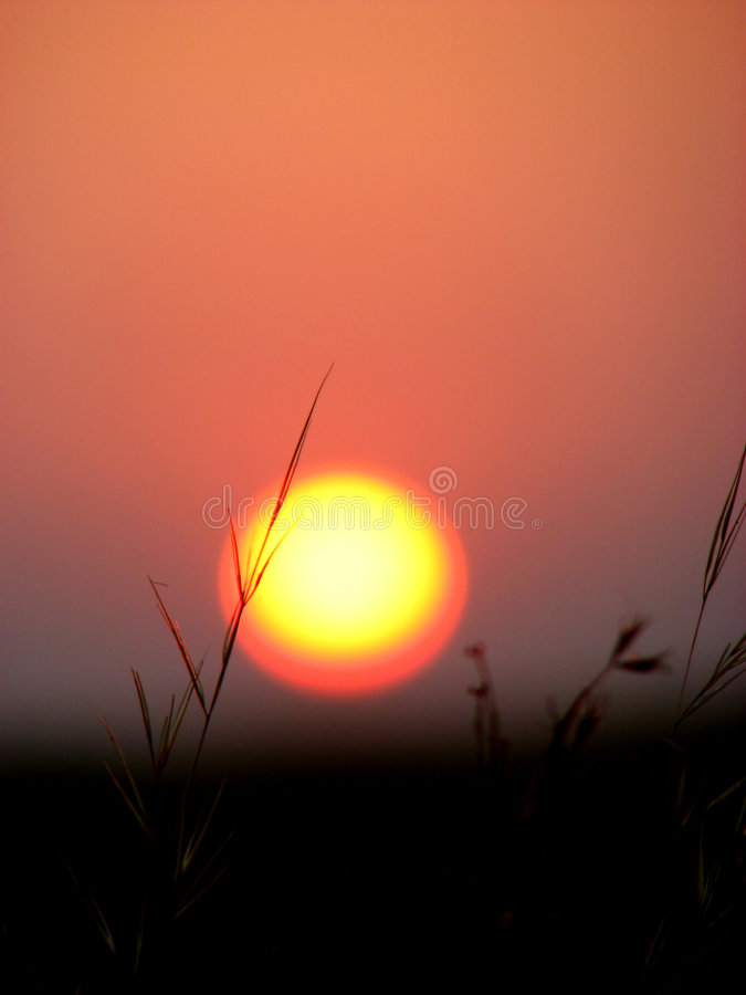 Download Sunset Blade Royalty Free Stock Photography - Image: 1714587