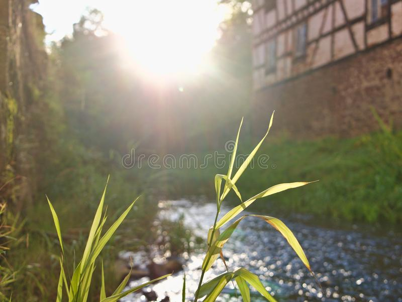 Sunset with blades of gras in foreground and little brook and old house in background stock photos