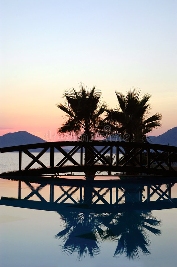 Download Sunset Bridge And Palm Trees Stock Image - Image: 1453359