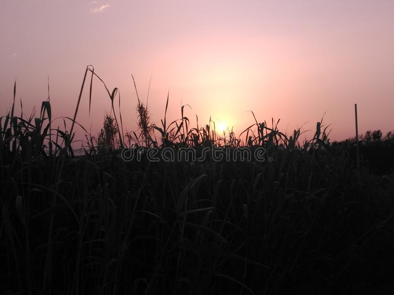 Sunset in Cadiz stock image