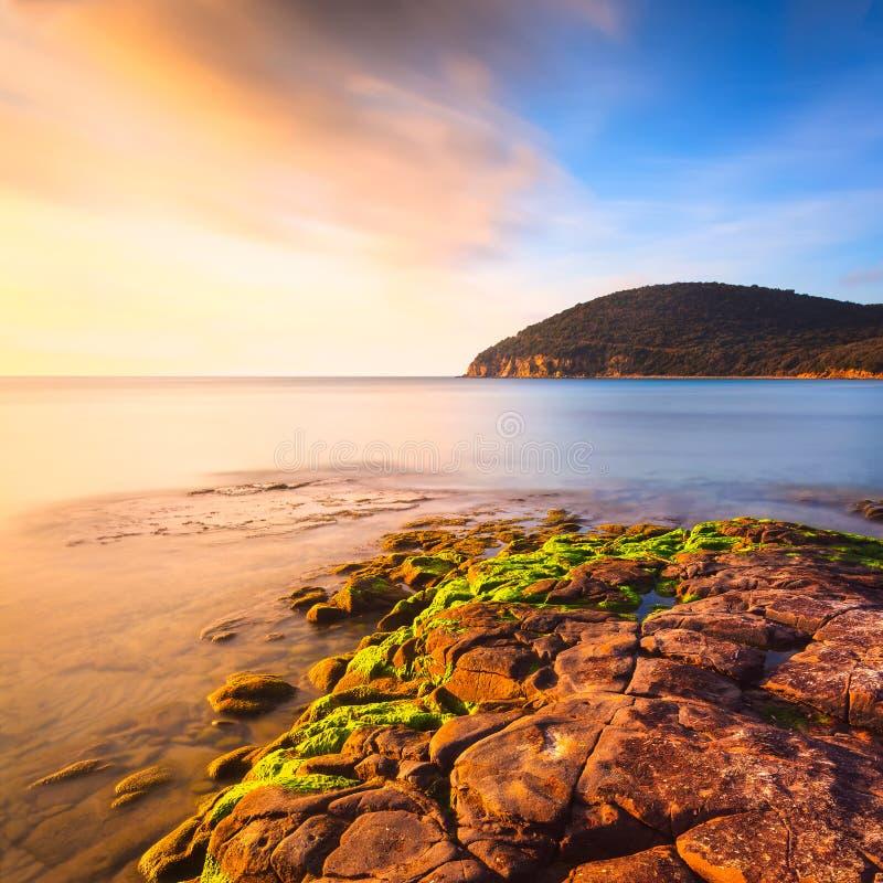Sunset in Cala Violina bay beach in Maremma, Tuscany. Mediterranean sea. Italy. stock image