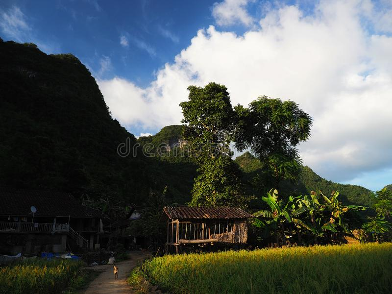 Sunset in Cao Bang, Vietnam. A Hmong village in Cao Bang, Vietnam. The Hmong Villege built in the midle mountain and field rice royalty free stock image