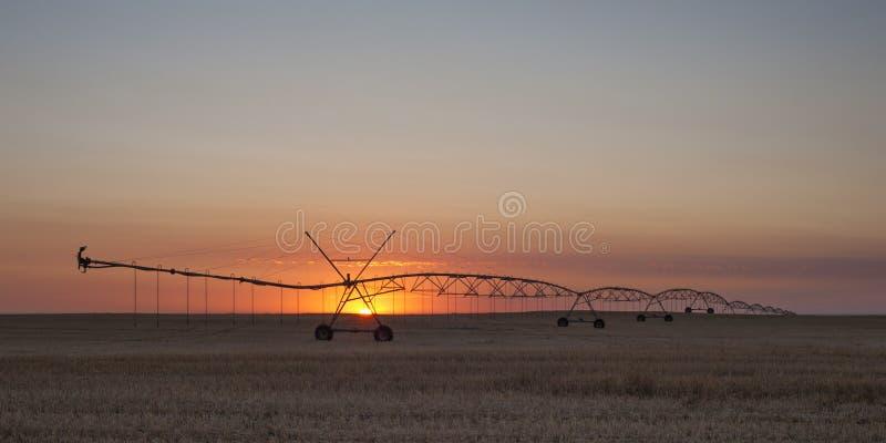 Sunset cerca de Warman, Saskatchewan, Canadá imagen de archivo