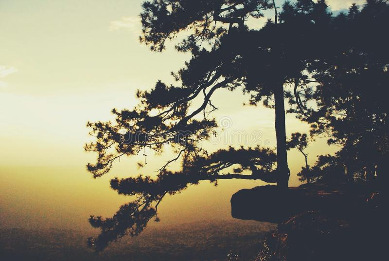 Sunset on the cliff stock photos