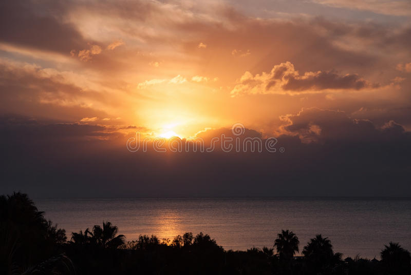 Sunset clouds palm trees silhouette horizon. Sunset sun clouds palm trees silhouette horizon sea ocean water stock image