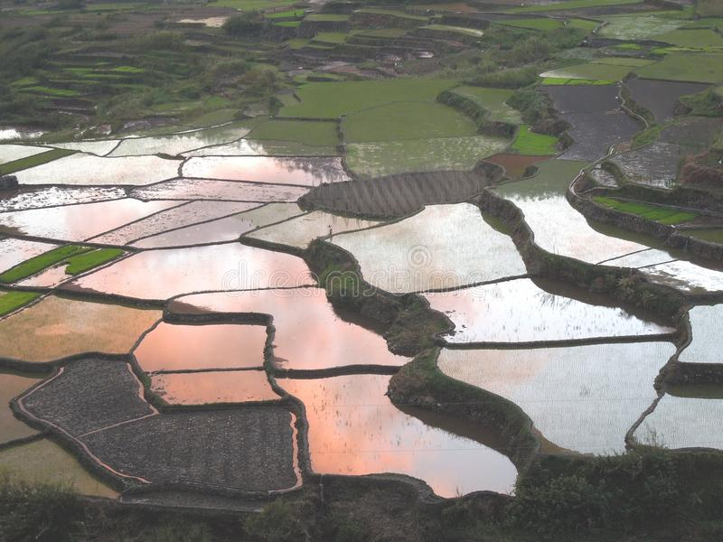 Download Sunset Clouds In Rise Paddies In Sagada Royalty Free Stock Image - Image: 23454986