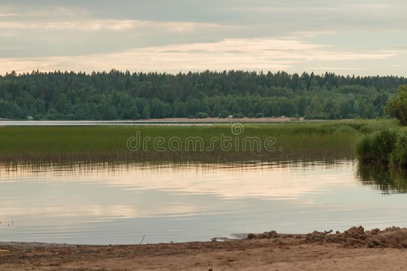 Sunset at coast of the lake. Romantic calm view near sea coast line. evening nature walk near wild lake stock photo