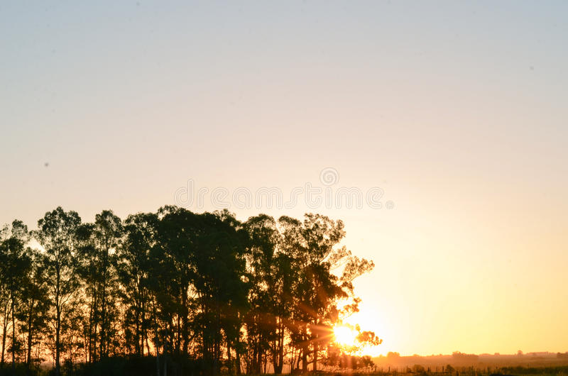 Sunset composition royalty free stock photo