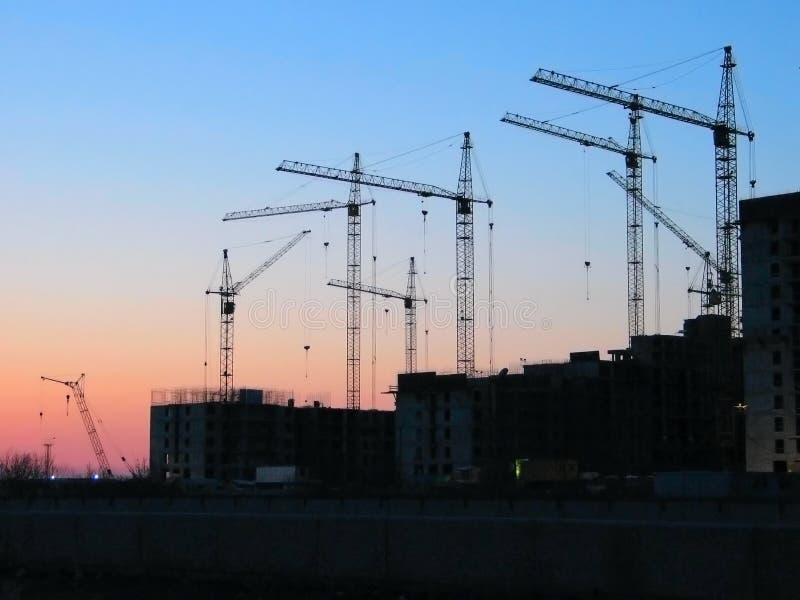 Sunset cranes stock photography