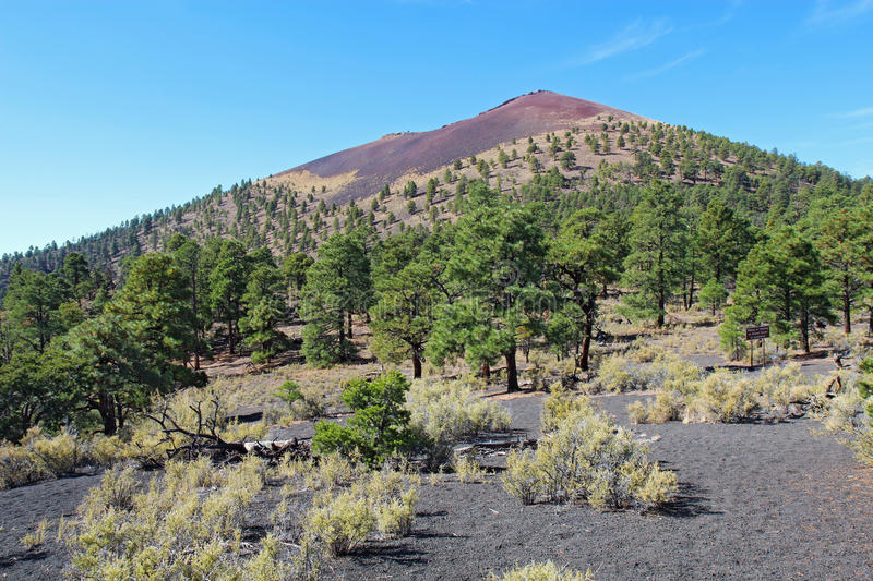 Sunset Crater volcanic cinder cone near Flagstaff, Arizona. Slope of the cinder cone at Sunset Crater Volcano National Monument north of Flagstaff, Arizona royalty free stock image