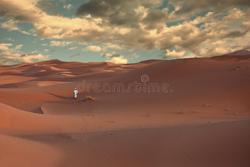 Download Sunset In The Desert Stock Images - Image: 11208854