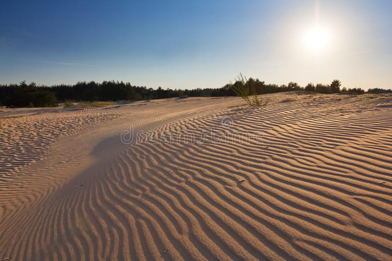 Download Sunset in a  desert stock photo. Image of barren, beautiful - 25461992