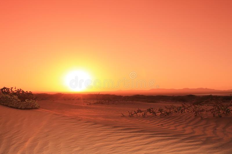 Sunset in the desert stock photos