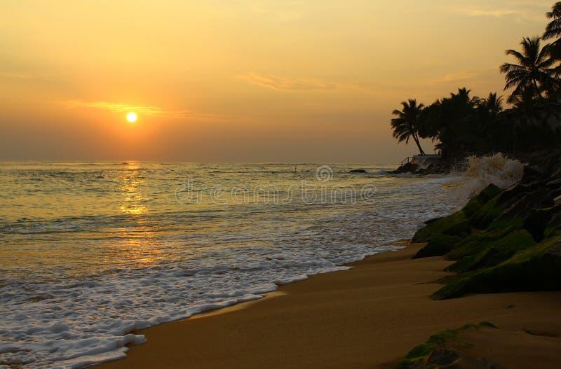 The sunset district Koggala, Sri Lanka royalty free stock photography