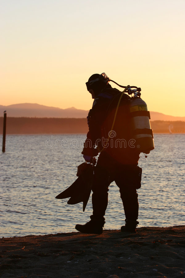 Sunset dive royalty free stock photography