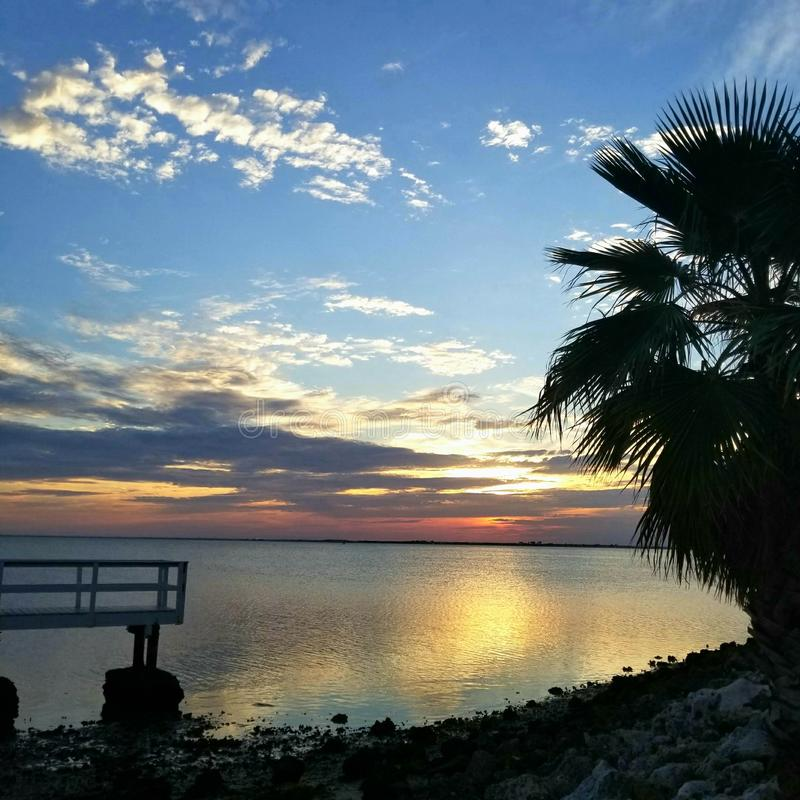 Sunset dock palm tree royalty free stock images