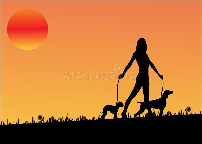 Sunset dog walking woman royalty free illustration