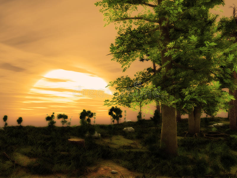 Sunset Dreamy Forest Landscape stock photo