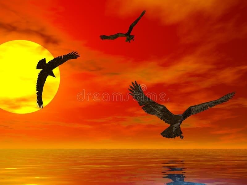 Sunset Eagles royalty free illustration