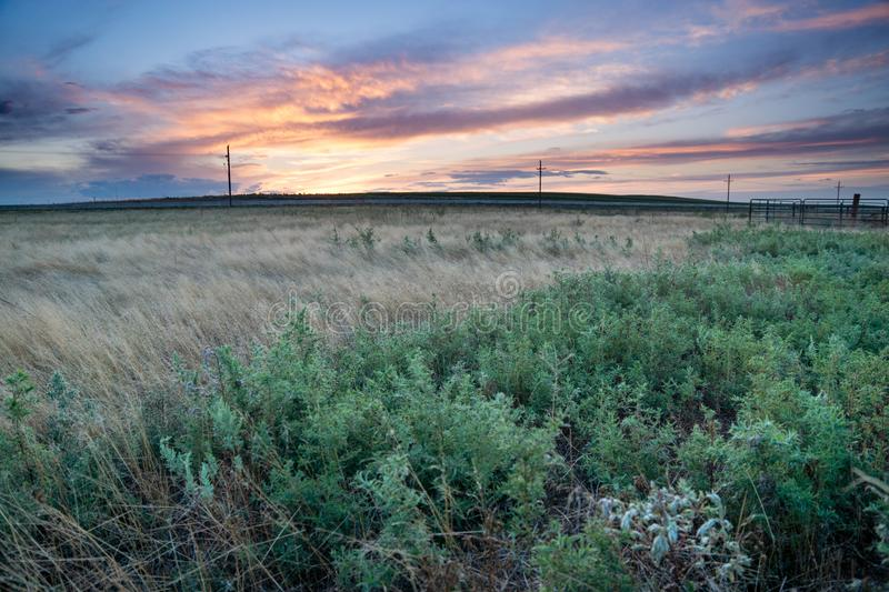 Sunset in Eastern Plains Colorado. A pink and purple sunset behind fields in eastern plains Colorado royalty free stock photography