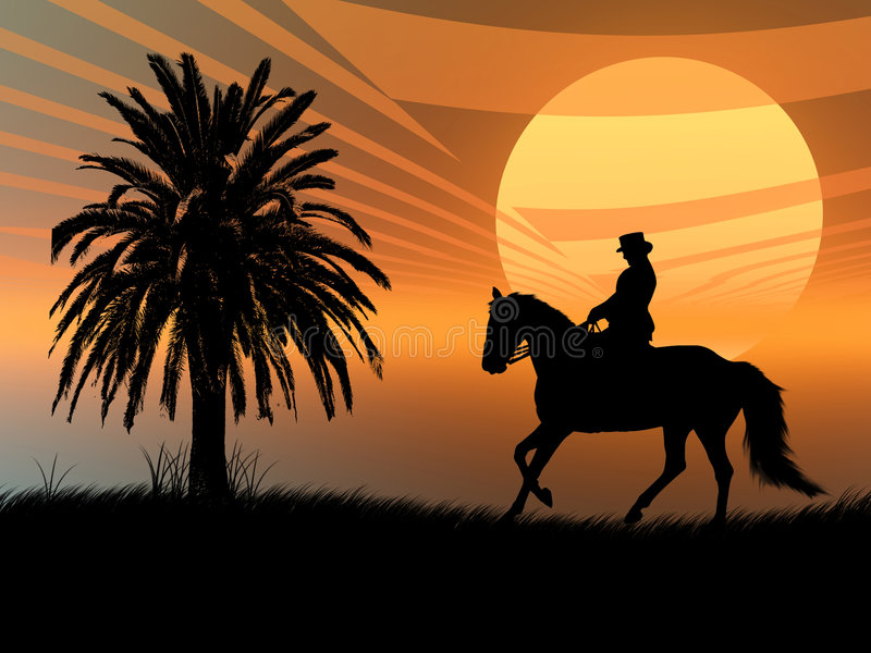sunset equestrian