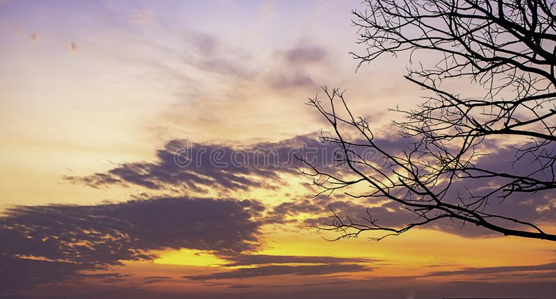 Sunset the evening light through the clouds and trees.  royalty free stock images