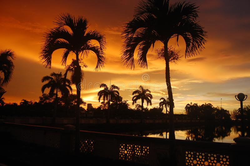 Sunset of fire over the lake and palm trees in the tropical island of Borneo in Kota Kinabalu, Malaysia. Spectacular co. Sunset of fire over the lake and palm stock photography
