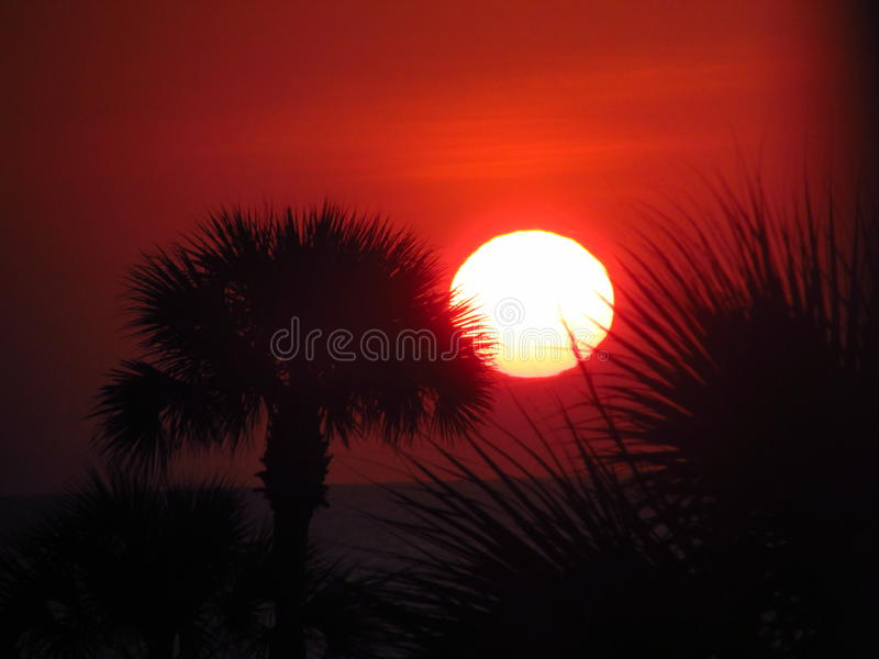 Sunset in Florida royalty free stock photo