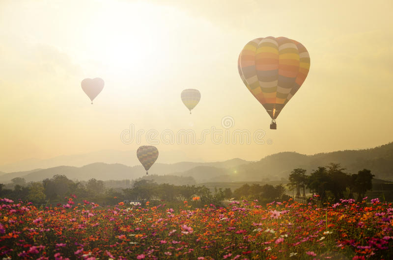 Sunset with flying Balloons. royalty free stock image