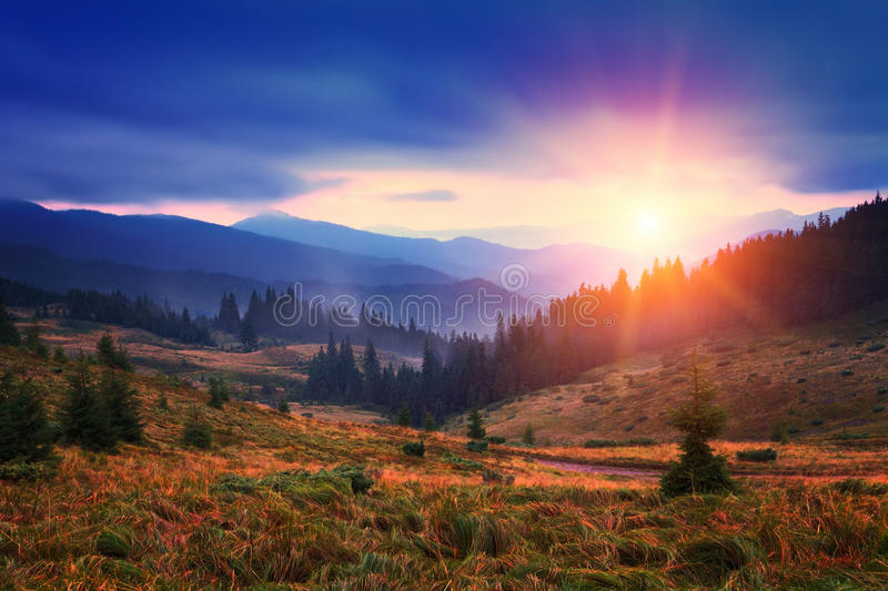 Sunset and fog between hills and trees royalty free stock image