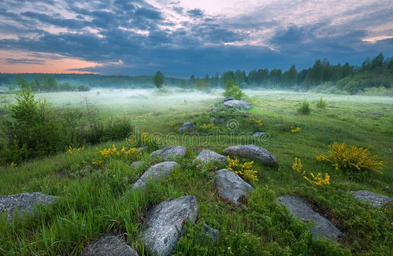 Sunset on the foggy meadow. With textured foregroundn stock photography