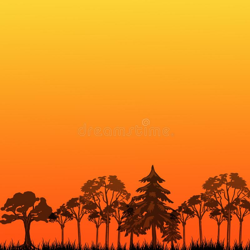 Sunset in forest royalty free stock photos