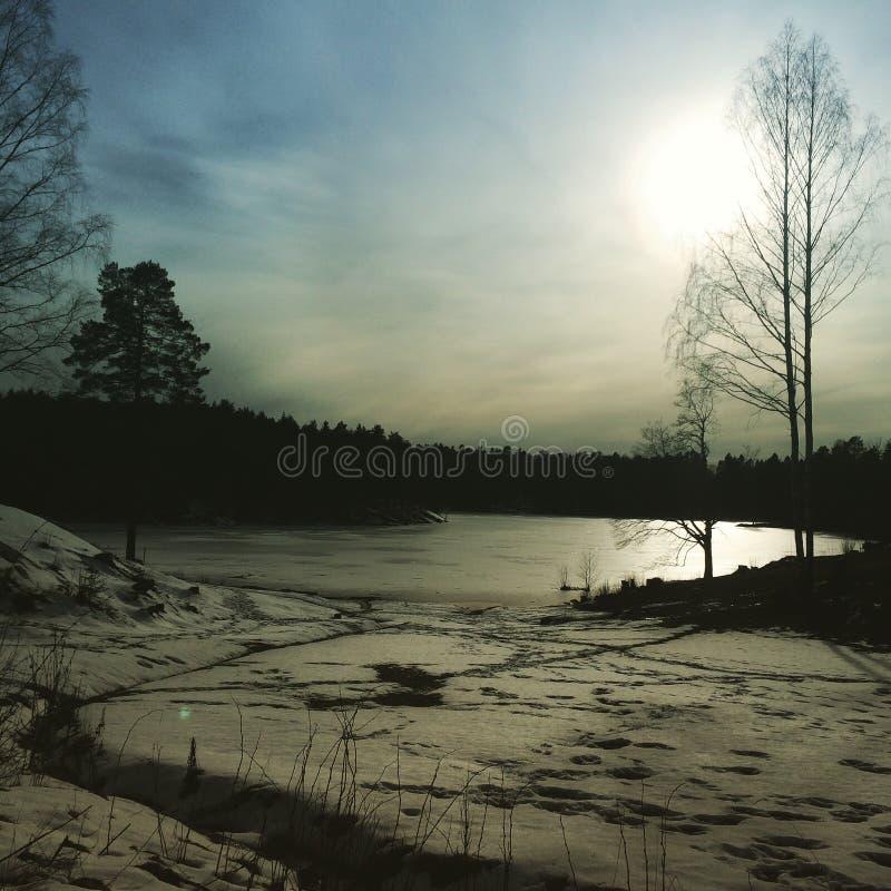 Sunset forrest Magic spring norway Ulsrudvann stock photo