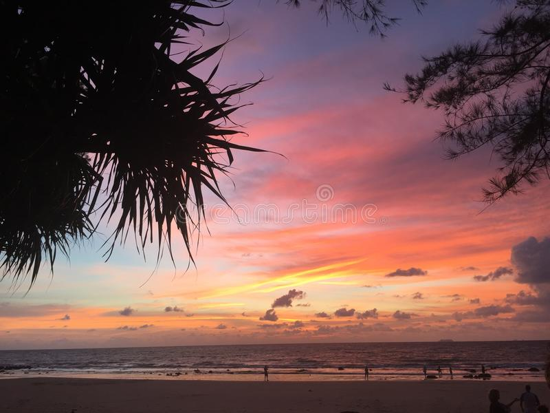 Sunset framed by sihouetted palm trees royalty free stock photos
