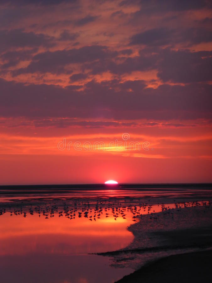 Sunset. In France, Le Crotoy, North Sea - Somme river royalty free stock image
