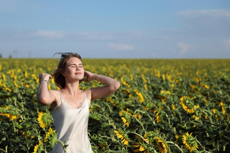 The girl in dark glasses walks on a sunset on the beautiful field of the blossoming sunflowers. stock photography