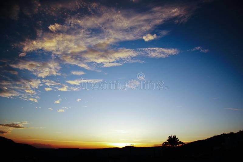 Sunset gradient. Lonely tree overlooking a sunset with clouds. Blue to orange color transition stock photo