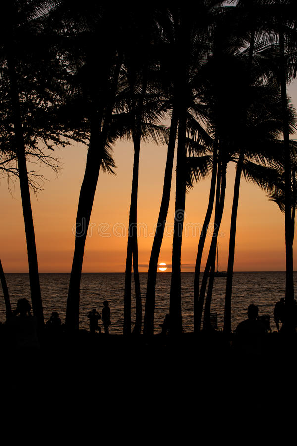 Sunset in Hawaii royalty free stock image