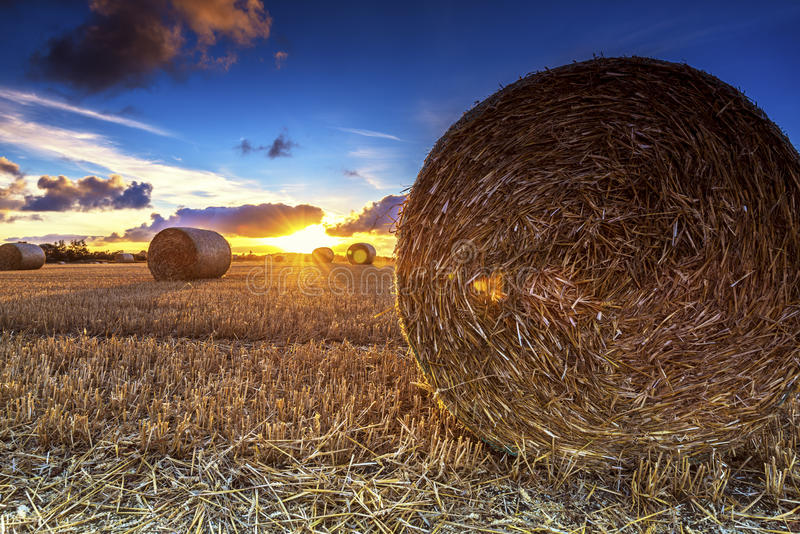 Sunset hay bales royalty free stock photography